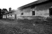 Ruine in Serbien by Christina Beyer