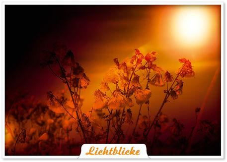 Lichtblicke-pk-es-werde-licht-1