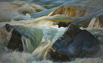 Wildwasser by Petra Schuh