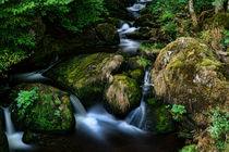 Triberger Wasserfälle - Waterfalls by Thomas Klee