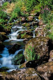 Triberger Wasserfälle - Waterfalls 2 von Thomas Klee