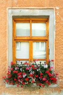 Window by kourai