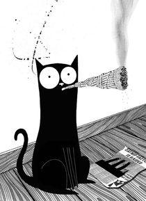Catnipweb