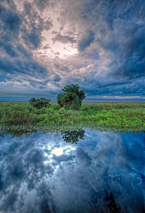 Reflections In The Florida Everglades by Dean Perrus