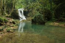 Waterfall by Florentina Necunoscutu de Carvalho