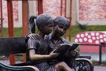 Reading von Florentina Necunoscutu de Carvalho