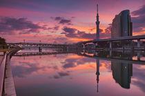 Tokyo Sky Tree and Sumida River, Tokyo, Japan at sunrise von Sara Winter