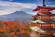 Chureito pagoda and Mount Fuji, Japan in autumn by Sara Winter