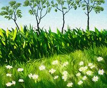 Green Field, White Daisies von Ilgvars Rauda