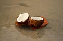 Coconut by cinema4design