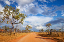 Unsealed road in the outback of Western Australia von Sara Winter