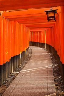 Torii gates of the Fushimi Inari Shrine in Kyoto, Japan von Sara Winter