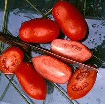 Saftige Tomaten. von li-lu