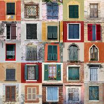 Twenty Five Windows von Igor Shrayer
