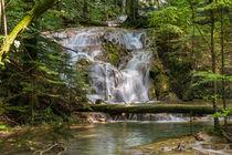 Waterfall in Romania by Florentina Necunoscutu de Carvalho