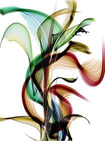 Flower by Nico Bielow by Nico  Bielow