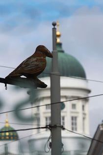 Helsinki by lisebonne