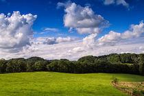 Sommerliches Wolkentreiben von Tobias Thiele