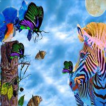 Zebra  by Saundra Myles