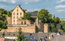 Schloss Dhaun 49 by Erhard Hess