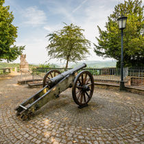 Schloss Dhaun-Kanone von Erhard Hess
