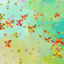 Butterflies on springtime by Gaspar Avila