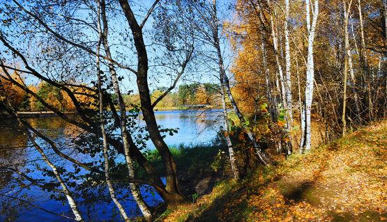 Autumn-fine-day-in-the-suburbs