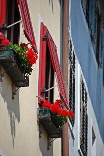 Altstadt Brixen... 6 by loewenherz-artwork
