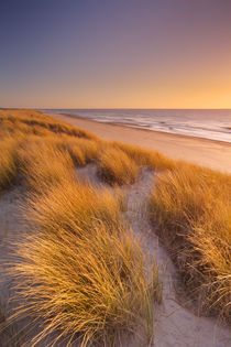 Dunes and beach at sunset on Texel island, The Netherlands von Sara Winter