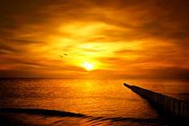Goldener Sonnenuntergang von darlya