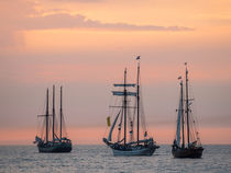 Segelschiffe auf der Hanse Sail by Rico Ködder