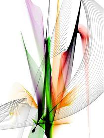 Fine Art by Nico Bielow by Nico  Bielow