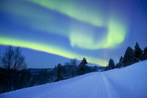 Aurora borealis over a road through winter landscape, Finnish Lapland by Sara Winter