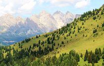 Beautiful View on a Tour through the Dolomites by Philipp Tillmann