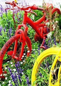 Colourful Bikes by Philipp Tillmann