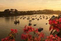 Bretagne - Le Conquet by Carolin Hinz