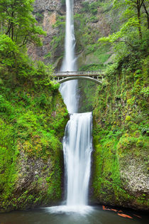 Multnomah Falls in the Columbia River Gorge, Oregon, USA by Sara Winter