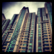 Modern Apartments in Shanghai  by Jay  Speiden