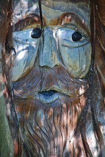 """""""Waldschrat"""" in Mooseurach... 2 von loewenherz-artwork"""