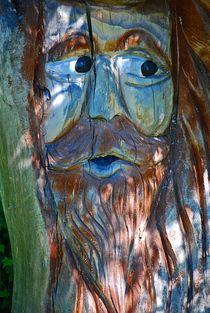 """""""Waldschrat"""" in Mooseurach... 1 von loewenherz-artwork"""
