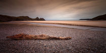 Driftwood at Three Cliffs Bay by Leighton Collins
