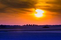 Abendsonne von falko69