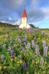 Vik church von Christine Büchler