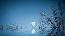 Blue Moon on the Water by Dave Harnetty
