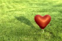 Symbols -  Heart by Mario Fichtner