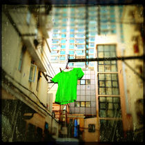 Green Tee-Shirt Signals the Start of Spring by Jay  Speiden