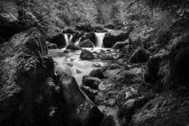 Swiss Falls-monochrome von David Hare