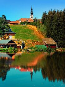Ein Dorf im Spiegel von Patrick Jobst