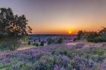 Sonnenuntergang in der Lüneburger Heide von Dennis Stracke