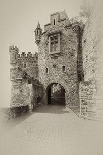 Schloss Dhaun-Haupteingang 8 von Erhard Hess